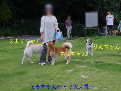 b_P8230005.jpg