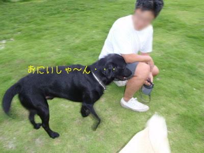 b_P8230029.jpg