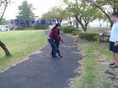 b_P9210190.jpg