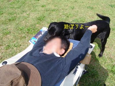 b_PA110158.jpg