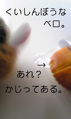 20090910180220