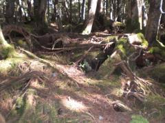 0909_駒出池キャンプ (20)