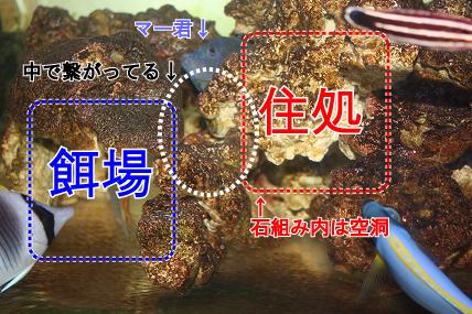 IMG_647100.jpg