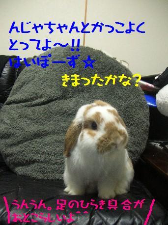 DSCN1833.jpg