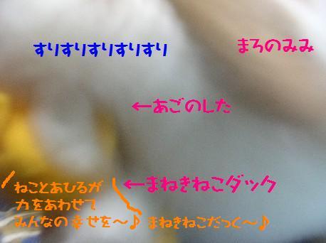 DSCN2051.jpg