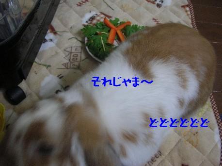 DSCN2188.jpg