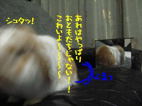 DSCN2474.jpg