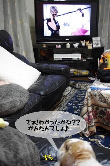IMGP7094.jpg