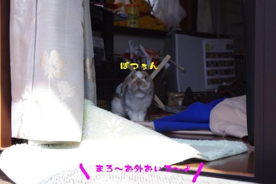 IMGP7859.jpg