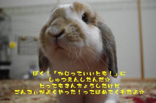 IMGP9043.jpg