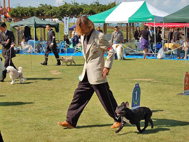 dogshow4.jpg