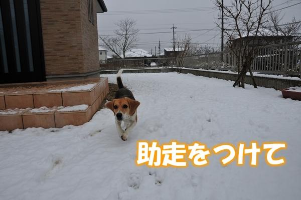 12_Rr009.jpg