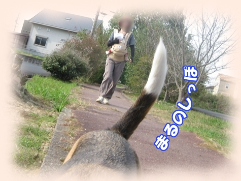7_Rr003.jpg