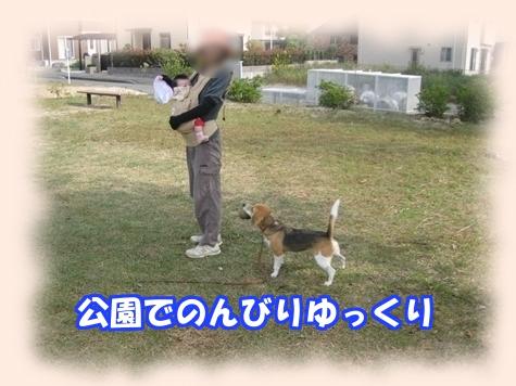 7_Rr005.jpg