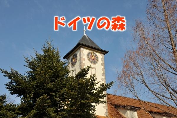 DSC_1859_Rr.jpg