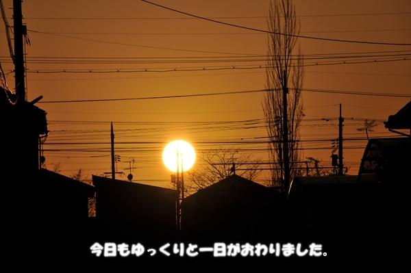 DSC_2320_Rr.jpg