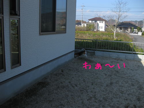 IMG_2835_R.png