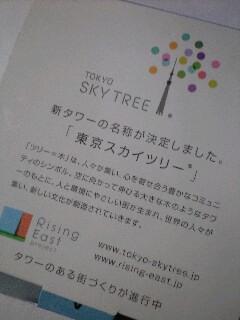 100117mmpskytree3.jpg