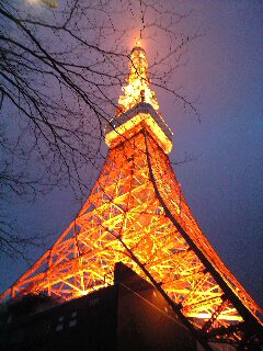 100211mmp東京タワー