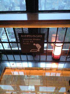 20100211mmp東京タワールックダウン窓付