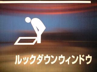 20100211mmp東京タワールックダウンピクトさん