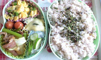20110706お弁当2