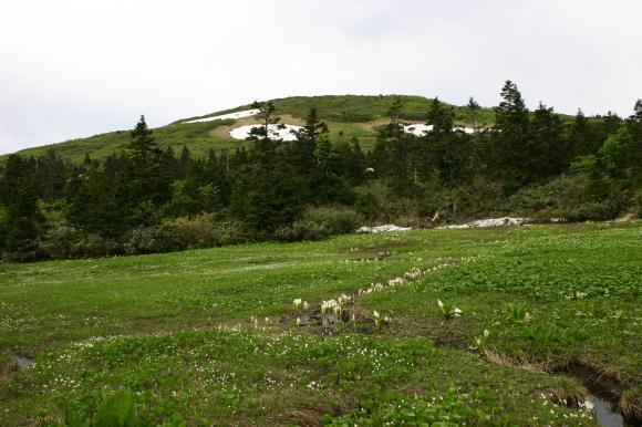 山人平湿原