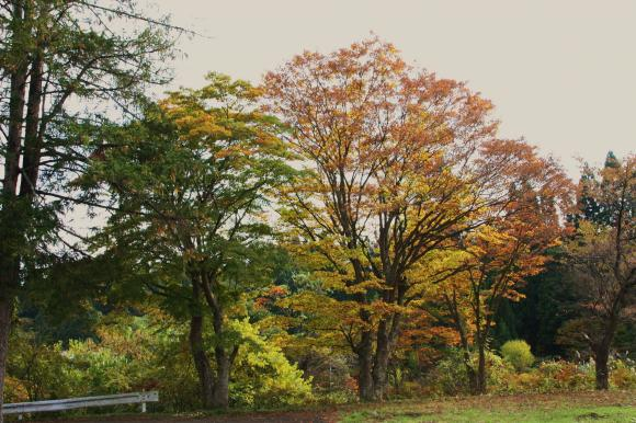 里の秋追記1