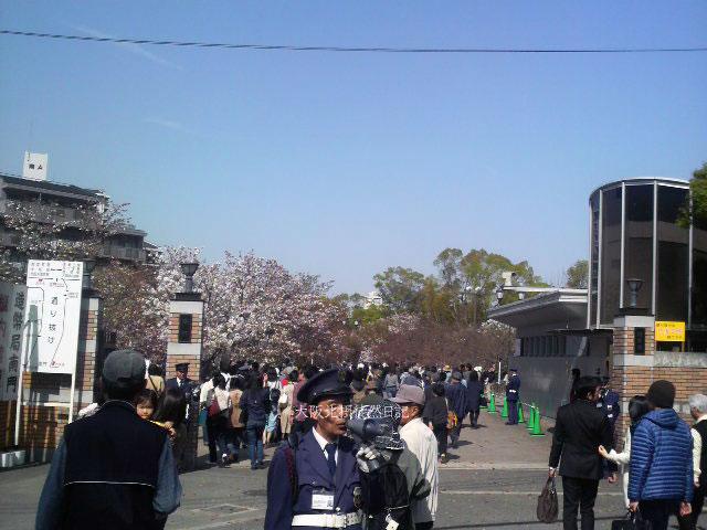 110415_造幣局_桜の通り抜け_造幣局入口付近