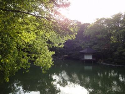 りんりん和歌山 (73)