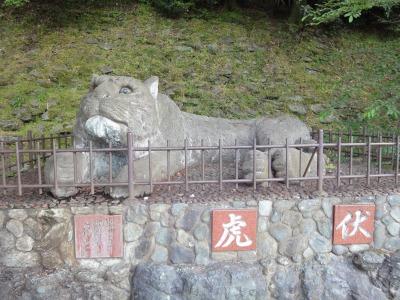 りんりん和歌山 (72)