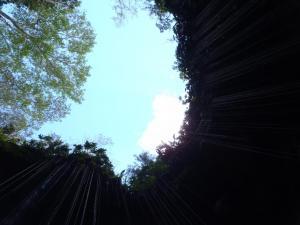 2011,2,5-13 カンクン旅行(まどかphot)+340_convert_20110215062926