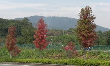 生駒山1017