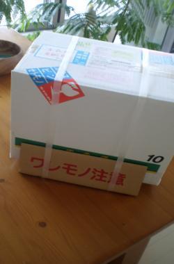 PA170047_convert_20101020111817.jpg