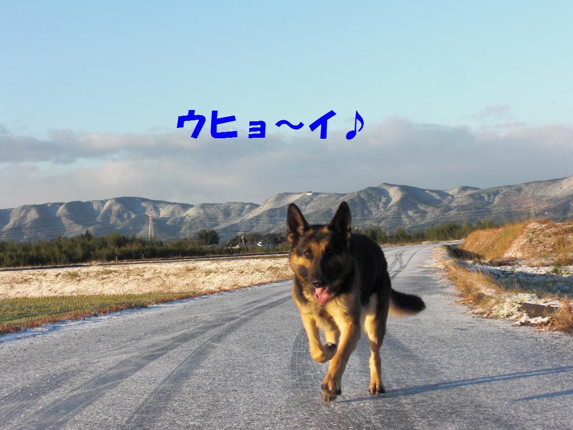 CIMG7823.jpg