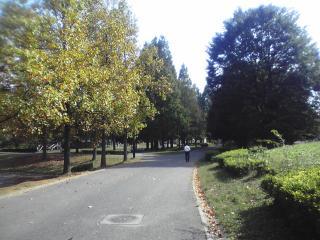 2009.10.20-1