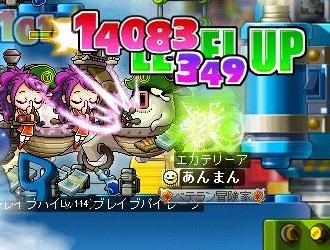 Maple110314_221946.jpg