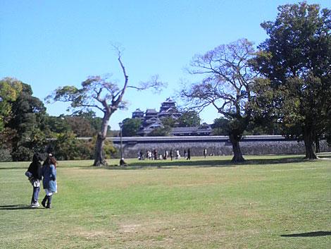 公園から見た熊本城の風景