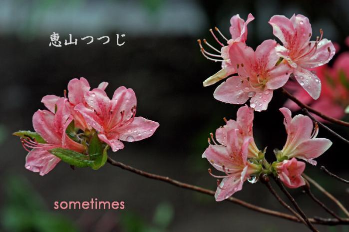 2010_0525c 023-80