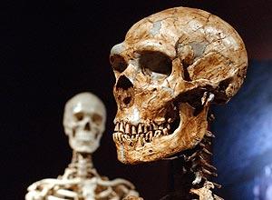 supremacia-numc3a9rica-dos-humanos-acelerou-fim-de-neandertais.jpg
