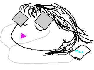 snap_mezasebihada1_2009104185242.jpg