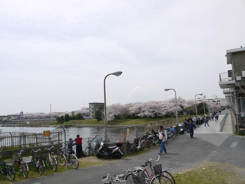 201104110098.jpg