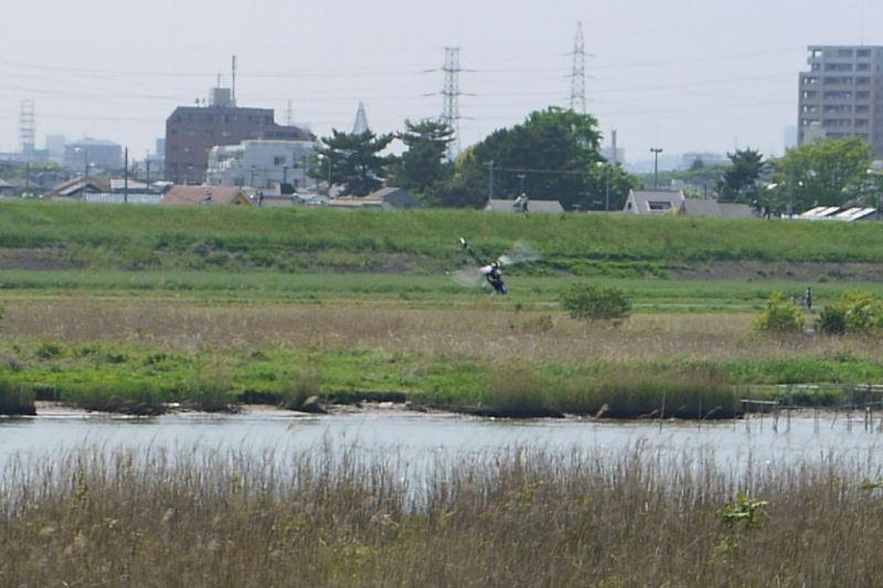 GWedogawa0342.jpg