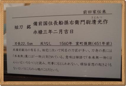 P7311100 (400x263)
