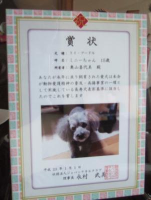 2011_03030002.jpg
