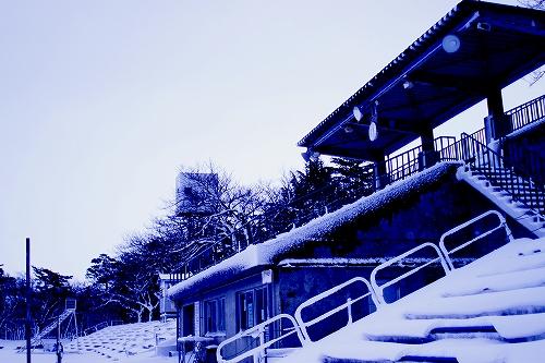 tsutsuishi 135