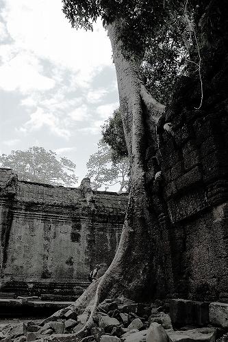 cambodia1 353-1