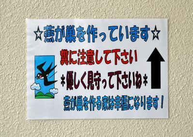 DSC_0918-20100710.jpg
