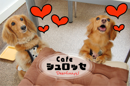 Cafe3_20090808.jpg