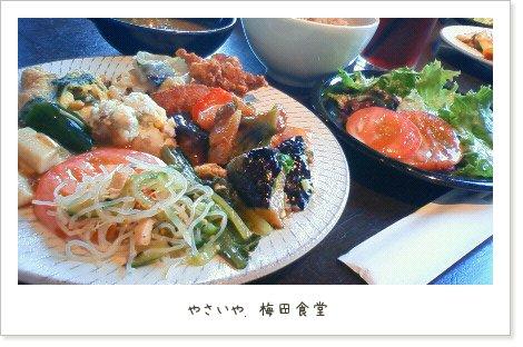 噂の梅田食堂♪
